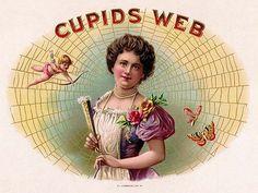 vintage cigar labels | Daughter Of The Golden West: Vintage Cigar Labels