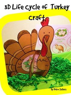 3D Turkey Life Cycle this Thanksgiving or Fall with this turkey craft ...