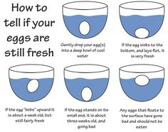How to tell if your eggs are fresh or bad! Such good information to have! #Eggs #TheMoreYouKnow