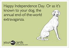 Happy Independence Day. Or as it's known to your dog, the annual end-of-the-world extravaganza.