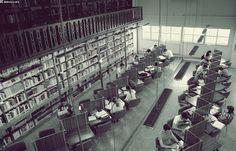 Fotografía ganadora del Concurso Fotográfico BUEx, realizada por nuestro compañero Gustavo Morán (Biblioteca Facultad de Medicina) #concursos #bibliotecas #instalaciones