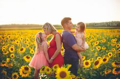 family maternity session in sunflower field