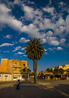 Amazing #africa: Palm On A Square In Asmara, Eritrea #cheaptickets from $995…