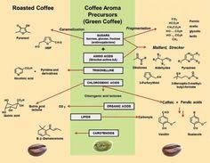 #coffee #Roastingㆍ볶음