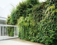 金沢21世紀美術館   緑の橋