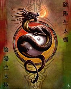 Posters: Gothic Mini Poster - Yin Yang Dragon Protector, Anne Stokes (20 x 16 inches) 1art1 http://www.amazon.com/dp/B00BNP0SJY/ref=cm_sw_r_pi_dp_rOyKwb0AZ77Y5