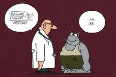 Meilleures images du tableau lechat jokes quotes accounting