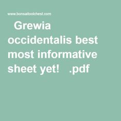 Grewia occidentalis best most informative sheet yet!   .pdf