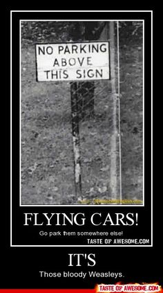 flying cars road sign: no parking above this sign Harry Potter Jokes, Harry Potter Fandom, Harry Draco, Severus Snape, Draco Malfoy, Hermione Granger, Must Be A Weasley, Ron Weasley, No Muggles