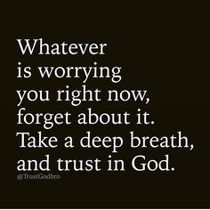 He's with us. We already have everything that we will need so why worry? #QuotesToLiveBy #FoodForThought #WhyWorry #NoNeedToWorry #XanneaSays #Xannea2017 #Xannea Instagram/Pinterest/Twitter: @xanneavargas @Regrann from @trustgodbro - #regrann