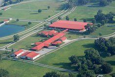Horse Farm Ocala Florida S by nc_sizemore