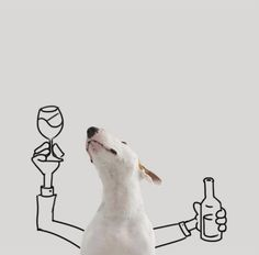Man Creates Comedic Gold With Art Featuring His Bull Terrier Perros Bull Terrier, Chien Bull Terrier, Bull Terrier Funny, Bull Terriers Anglais, English Bull Terriers, Love My Dog, Funny Dogs, Cute Dogs, Dog Comics