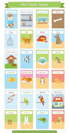 Free printable pet flash cards. Download them in PDF format at http://flashcardfox.com/download/pet-flash-cards/