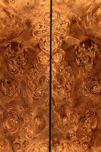 Discover thousands of images about Stabalized black ash burl Wood Slab, Wood Veneer, Stabilized Wood, Got Wood, Wooden Textures, Log Furniture, Wood Patterns, Wood Slices, Woodworking Wood