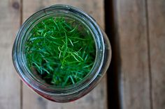 Feathering My Nest...: Plants in Jars!...