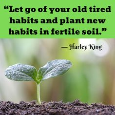 Monday Morning Motivation: Harley King — New Habits Monday Morning Motivation, Abigail Adams, Visual Memory, Self Talk, Happiness, King, Bonheur, Being Happy, Happy