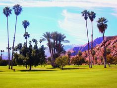 O'donnell Golf Course Palm Springs | Photo by Randy Garner