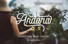 Andara Font ( 30% OFF ) by Aqr Typeface on @creativemarket