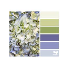 hydrangea hues ❤ liked on Polyvore featuring design seeds, backgrounds and colors