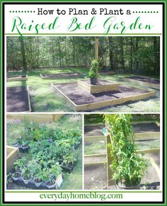 How to Plan and Plant a Raised Bed Garden for Vegetables and Herbs   The Everyday Home   www.everydayhomeblog.com