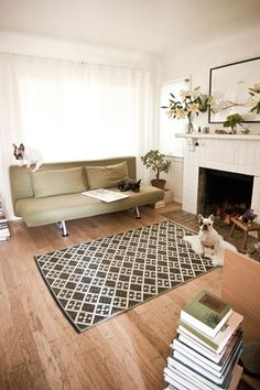 French bulldogs in modern rustic living room