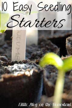 10 Easy Seedling Starters - http://www.littleblogonthehomestead.com/easy-seedling-starters/