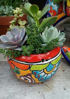 Find This Pin And More On Container Gardening: Spring By Familytreeinc.