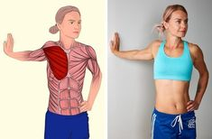 17 muscle stretching exercises that will make you feel perfect – Fitness and Health Advice Yoga Fitness, Wellness Fitness, Physical Fitness, Muscle Stretches, Stretching Exercises, Gym Workouts, At Home Workouts, Estilo Fitness, Sedentary Lifestyle