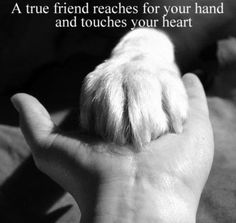 A True Friend Reaches for your Hand and Touches your Heart ..