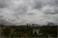 Gardens by the Bay, Supertrees and Singapore Flyer - near Marina Bay Sands Hotel – Singapore, Asia