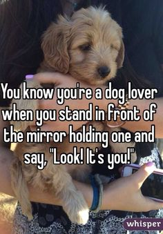 """You know you're a dog lover when you stand in front of the mirror holding one and say, """"Look! It's you!"""""""