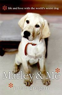 Marley & Me   Am such a sucker for books about dogs. It's just such a heartwarming tale about how much trouble dogs can be, but there is no escaping how much they make us love em!