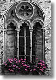 Gothic windows, church windows, garden windows, windows and doors, gothic. Architecture Antique, Architecture Graphics, Architecture Details, Windows Architecture, Gothic Windows, Church Windows, Garden Windows, Windows 20, Gothic House