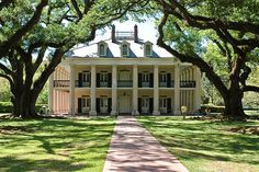 Oak Alley.  Old plantations are beautiful.  Love the columns.