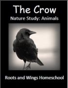 The Crow Nature Study: Animals - Roots and Wings Homeschool | Nature Studies