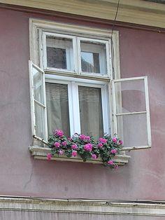 WINDOW ! - Brasov, Brasov