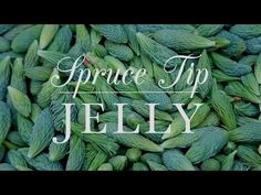 Learn how to make spruce tip jelly from Kitchen Vignettes on PBS Food. The Christmas flavor has a springtime citrus element. Spruce Tips, Kitchen Vignettes, Homemade Jelly, Pbs Food, Jelly Recipes, Weed Recipes, Dessert Recipes, Desserts, Wild Edibles