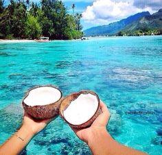 Coconuts.