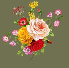 H&m Home, Border Design, Flower Pictures, Muhammad, Flower Prints, Textile Design, Baroque, Beautiful Flowers, Saree