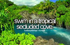 swim in a tropical secluded cove. - justboythings