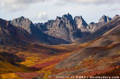 Tombstone Territorial Park in autumn Yukon [1024x683] [OS] Photographer: Nicolas Dory