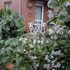 #urbangardering  Mein kleiner üppiger Maigarten auf 30 m2
