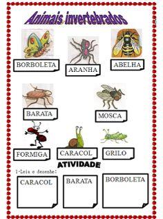 POR  AMOR: Atividade de Ciências: Classificação dos animais