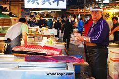 Tsukiji Fishmarket - Tokyo - Japan
