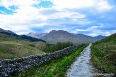 Walled trailed along the path between Crianlarich and Tyndrum on the West Highland Way.