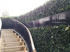 Artificial Hedges are normally made with Artificial Boxwood Foliage...which we can do, but as Manufacturers of Bespoke Items we like to offer alternative such as this Artificial Bay Hedge. We manufactured, supplied and installed this in the UK.  We supply within the UK and overseas.