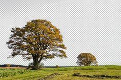 Como remover o fundo de uma imagem usando a ferramenta Background Eraser | ::Tutoriais Photoshop::
