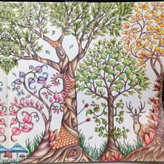 Inspirational Coloring Pages From Secret Garden Enchanted Forest And Other Books For Adults