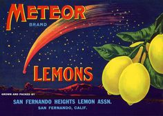 Vintage Fruit Crate Art Portrays the San Fernando Valley of Long ...