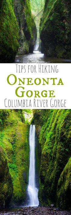 Oneonta Gorge Hike {